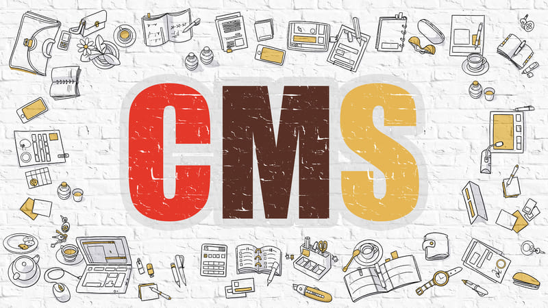 Поможет ли CMS в управлении интернет-магазином